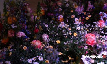 World Flowers racconta le città del design