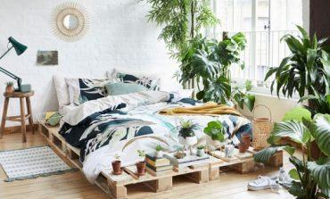 Primark nell'homewear con Botanica