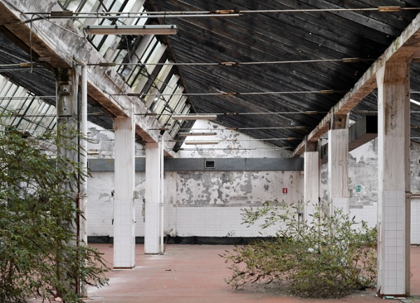 Nasce BienNoLo, biennale d'arte contemporanea
